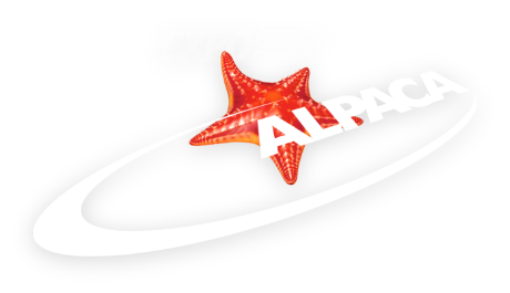 Logo Alpaca Expo Group
